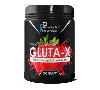 Powerful Progress Gluta-X 500 g