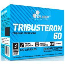 Стимулятор тестостерона Olimp Tribusteron 60 120 капс